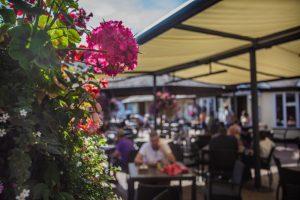 Courtyard Sun Guest Drinking Dining Flowers Blur Bokeh